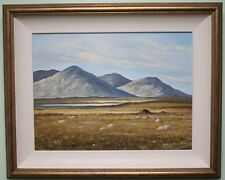 Irish Art Original Oil Painting Framed DONEGAL IRELAND by MYRTLE JOHNSTON