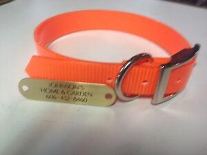 "1"" Plastic Coated Nylon Orange Dog Collar With Brass Diamond Engraved Plate"