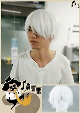 Male White Wig for Cosplaying Anime Characters Straight Short Synthetic Wigs AR