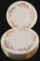 Minton Bedford Bone China Dinner Plates - Set of 10 - 10.5 Inch - S669