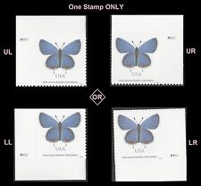 US 5136 Eastern Tailed-Blue Butterfly NMS plate single MNH 2016