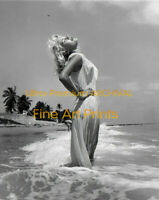 BUNNY YEAGER Perky Self Portrait in Wet Cover HI-RES Pro ARCHIVAL PHOTO (8.5x11)
