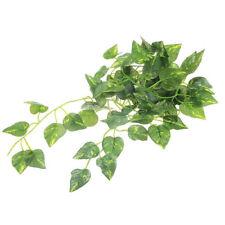 2M Artificial Vine Leaf Scindapsus Plant Garland for Reptiles Terrarium Solid