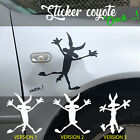 COYOTE Sticker crash autocollant Voiture humour carrosserie Road Runner ouch..!