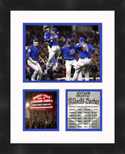Chicago Cubs 2016 World Series Champions Photo Framed Photo Collage Memorabilia