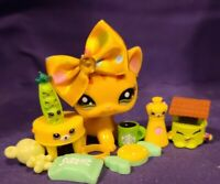 Authentic Littlest Pet Shop LPS 1377 Shorthair Cat Orange TIGER COLLAR Green