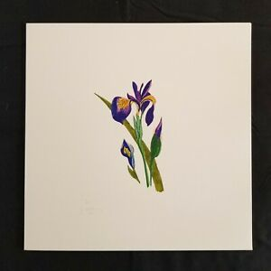 Sarah Martinez Prints