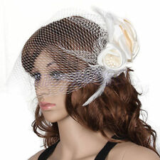 Clear Bridal Veils and Tiaras