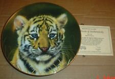 Princeton Gallery Collectors Plate TIGER CUB - SIGNATURE EDITION
