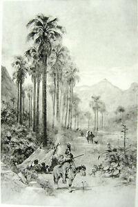 PALM DESERT VALLEY BAJA California MEXICO INDIANS ~ Old 1888 Landscape Art Print