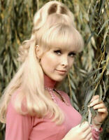 Gorgeous Barbra Eden - I Dream of Jeanie Fame - 8 x 10 Photo print