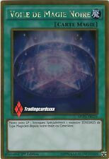 Yu-Gi-Oh! Voile de Magie Noire (Dark Magic Veil): MVP1-FRG19 -VF/Gold Rare-