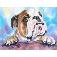 DIY 5D Full Drill Diamond Painting Embroidery Cross Stitch Kits Bull Dog