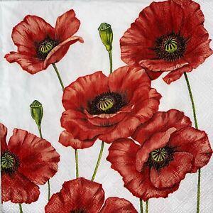 4 x Single Paper Napkins - Decoupage - Craft - Romantic Poppy Flowers - B91