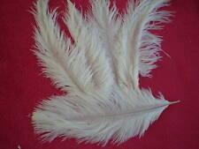 lot de 5 plumes autruche blanche 20 cm