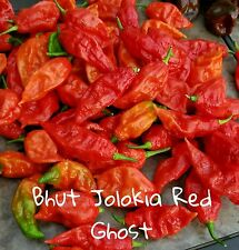 (25+) Bhut Jolokia Red Ghost Pepper Seeds