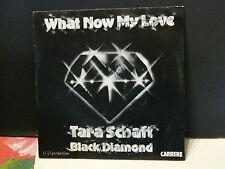 TARA SCHAFT BLACK DIAMOND What now my love 49381