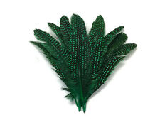 1/4 Lb - Kelly Green Polka Dot Guinea Fowl Wing Quills Wholesale Feathers (Bulk)