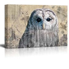 Double Exposure Close Up of a Grey Barred Owl - Canvas Art - 16x24 inches