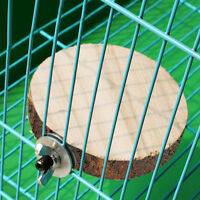 Wooden Round Coin Parrot Bird Pets Cage Perches Stand Platform Budgie Hang-Toy^
