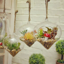 Hanging Glass Hydroponic Flower Planter Ball Vase Terrarium Container Home Decor