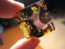 Meteorite ESQUEL - The Pallasite Queen - Thin translucent slice...