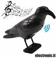 Corvo dissuasore per uccelli con sensore di movimento e suono Lifetime Garden