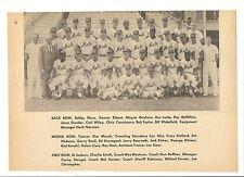 Mets 1964 HUGE Team Picture Ed Kranepool Casey Stengel Chris Cannizzaro Lou Niss