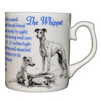 Whippet - Dog Origins Breed - Fine bone china mug