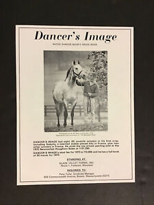 DANCER'S IMAGE  STUD AD  Horse Racing NATIVE DANCER