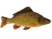 Karpfen Schuppenkarpfen 62 cm Fisch Plüsch Kissen Pillow Friedfisch