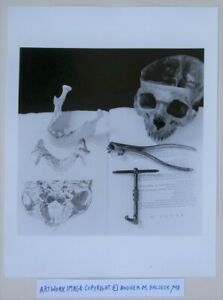 Macabre Photographer © Andrea Baldeck Gelatin Silver Print Jaw Teeth Human Skull