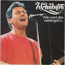 Wie Wird Des Weiterge'n ... - Wolfgang Ambros ( Bellaphon 288-01-003 )