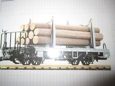 playmobil LGB trein /train wagon boomstam vervoer
