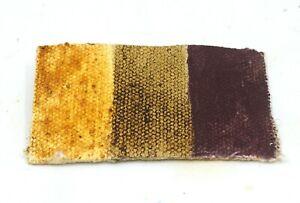 Mummy Brown, Asphaltum, Caput Mortuum - Oil Paint Swatch - Genuine - Rare!