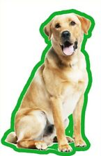 YELLOW LABRADOR AIR FRESHENERS X 2 FOR YOUR CAR HOME LONG LASTING FRAG