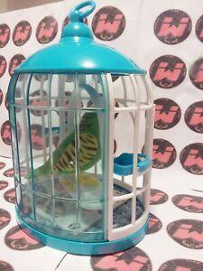 Little live Pets cocoritos Completo di Pappagallo che ripete la tua Voce, usato.