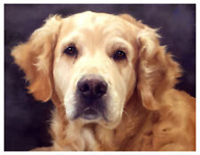 artav Golden Retriever 12 Art Print Dog Puppy Painting