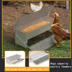 Galvanized Automatic Chicken Feeder Chook Food Feeder 5Kg Capacity Treadle Self