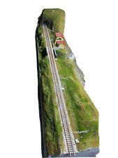Plastico Ferroviario Diorama