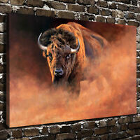 POPT023  100% hand painted high quality Modern bull Oil Painting on canvas Art