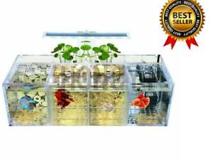 Isolated fish tank tilted water pump breeding cylinder baby betta tank guppy bre