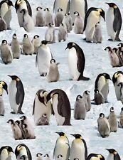 Fat Quarter Penguins Snow Winter Cotton Quilting Fabric 490 Elizabeth's Studio
