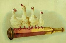 1880's-90's Tobacco Cigarette Holder With Four Adorable Geese Fab! P93