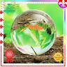 Asian Quartz Pure Clear Magic Crystal glass Healing Ball Sphere 60mm Photography