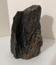 Petrified Wood Figurine Sample Origin Unknown