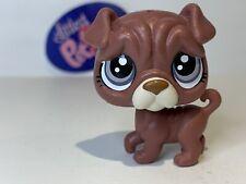 Rumples Shar Pei Dog #57 - Authentic Littlest Pet Shop - Hasbro Lps