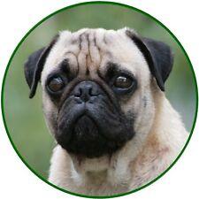 30 Custom Pug Art Personalized Address Labels