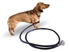 Hermes 2011 Pets Dog/Horse Walking Rope, Mint!
