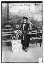 Caesar Belgian Army War Dog & Mrs Green World War 1 7x5 Inch Reprint Photo